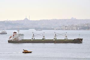 Photo of VIGOROUS ship