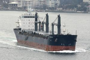 Photo of PACIFIC HURON ship