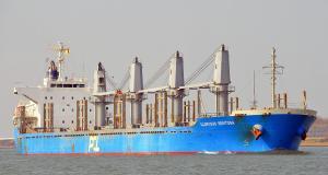 Photo of GLORIOUS SENTOSA ship
