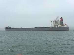 Photo of CAPE AMANDA ship