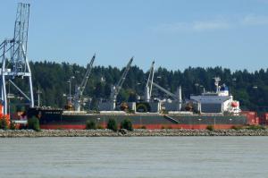 Photo of STOVE OCEAN ship