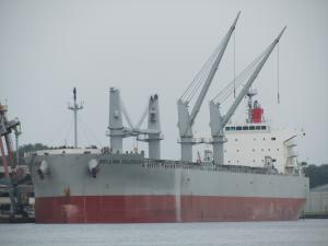 Photo of BELLINA COLOSSUS ship