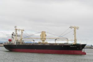 Photo of SHINLINE 10 ship