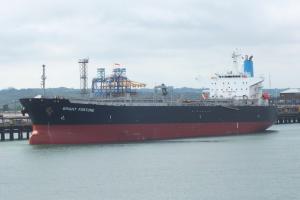 Photo of BRIGHT FORTUNE ship