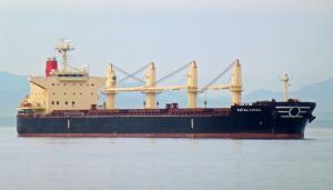 Photo of ROYAL CHIBA ship