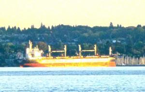 Photo of MANDARIN GRACE ship