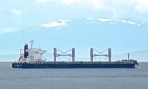 Photo of FURNESS ST KILDA ship