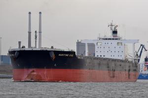 Photo of MARITIME KING ship