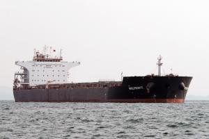 Photo of WELPROFIT ship