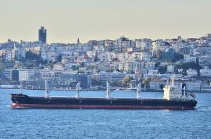Photo of INTERLINK LEVITY ship