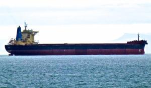 Photo of AMIGO II ship