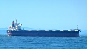 Photo of DREAM STAR ship