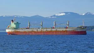 Photo of STAR NORITA ship