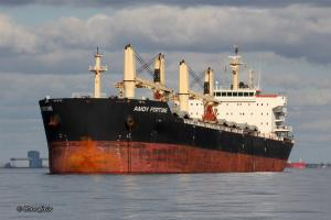 Photo of AMOY FORTUNE ship