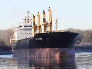 Photo of SAM FALCON ship