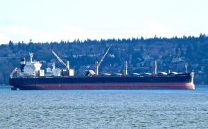 Photo of IVS BEACHWOOD ship