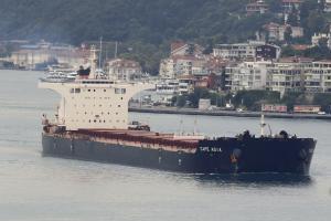 Photo of CAPE ASIA ship