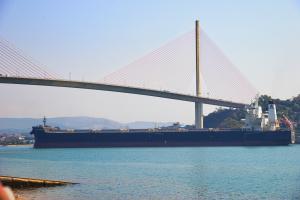 Photo of ALPHA WISDOM ship