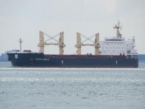 Photo of VIENNA WOOD N ship