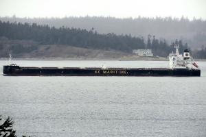 Photo of DARYA LOK ship