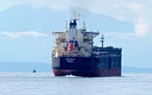 Photo of CHRYSSA K ship
