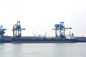 Photo of KT BIRDIE ship