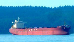 Photo of HYUNDAI PASSION ship