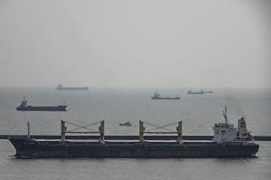Photo of BUFFLEHEAD ship