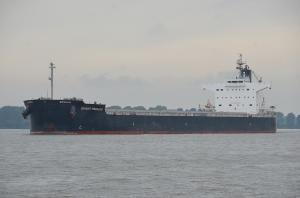 Photo of BRIGHT PEGASUS ship