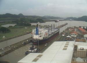 Photo of SAKURA OCEAN ship