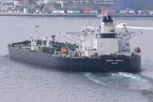 Photo of DENSA WHALE ship