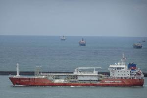 Photo of CORAL ACROPORA ship
