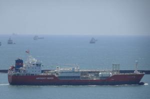 Photo of CORAL ACTINIA ship