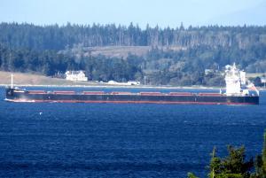Photo of CYMONA PROGRESS ship
