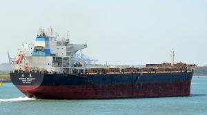 Photo of SPRING WEALTH ship
