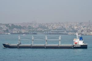 Photo of WESTERN CALLAO ship