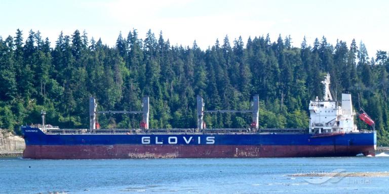 GLOVIS MAPLE photo