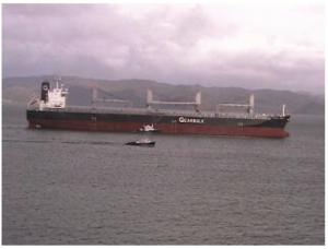 Photo of PETREL ARROW ship