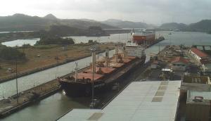 Photo of WHITE FIN ship