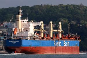 Photo of CHILOE ISLAND ship
