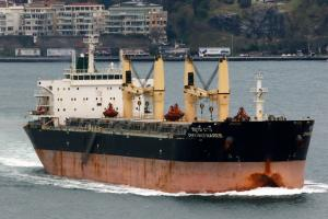 Photo of M.V.CHAYANEE NAREE ship