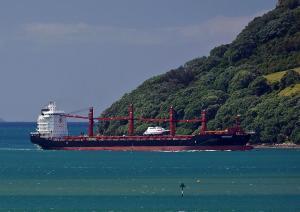 Photo of SHENGKING ship