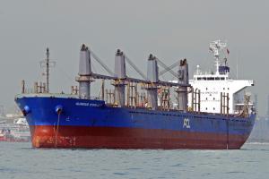 Photo of GLORIOUS STARLIGHT ship