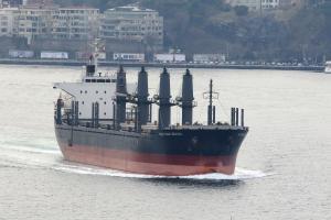Photo of DAYTONA BEACH ship