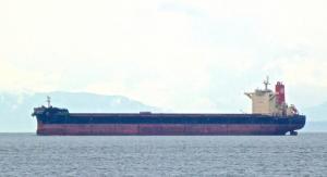 Photo of TRUE NAVIGATOR ship