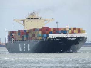 Photo of MSC ALTAMIRA ship