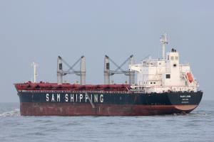 Photo of SAM LION ship