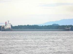 Photo of VITTORIA ship
