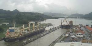 Photo of DL MARIGOLD ship