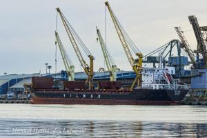 Photo of YM FUJI ship